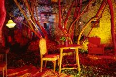 <strong> Rosa Muñoz</strong> BOSQUE HABITADO CON LÁMPARA, 40 x 40cm, Endura premier brillo sobre Dibond, Edición de 15 ejemplares especialmente realizada para Aurora Vigil-Escalera Galería de Arte