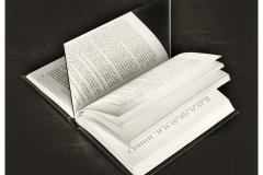 Chema-Madoz-Sin-Título-sin-marco-40-x-50-cm-con-marco-83-x-73-cm-Fotografía-BN-sobre-papel-baritado-virado-al-sulfuro-Ed.-9-15-1992