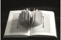 Chema-Madoz-Sin-Título-sin-marco-40-x-50-cm-con-marco-73-x-83-cm-Fotografía-BN-sobre-papel-baritado-virado-al-sulfuro-Ed.-8-15-1994
