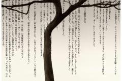 9_sauce_110x125_3_7_2011