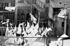Colita. Monjas tendiendo la ropa. 1962