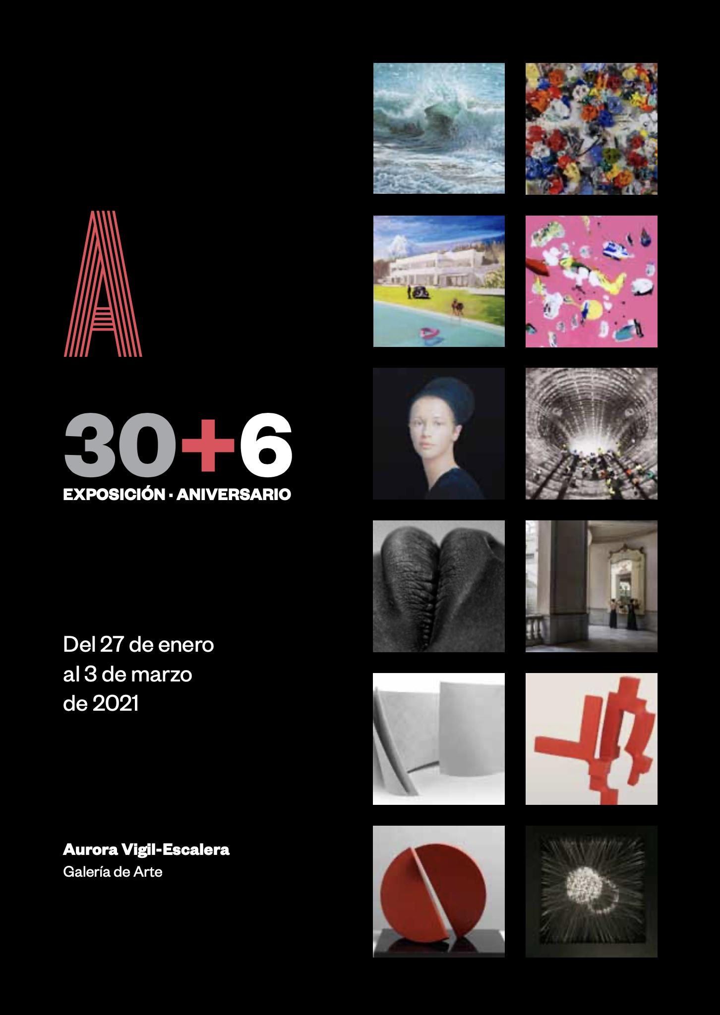 Exposici&oacuten Aniversario - 30+6