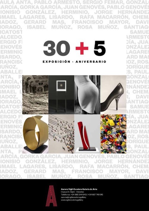 Exposici&oacuten Aniversario - 30+5